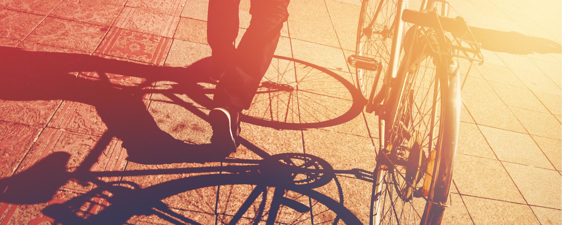 Fietsenbörse – Der Fahrradmarkt